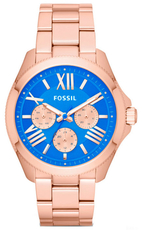 FOSSIL AM4556
